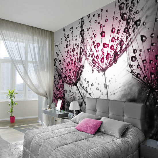 Wall mural - dew on dandelion seeds | Wall Decor Ideas